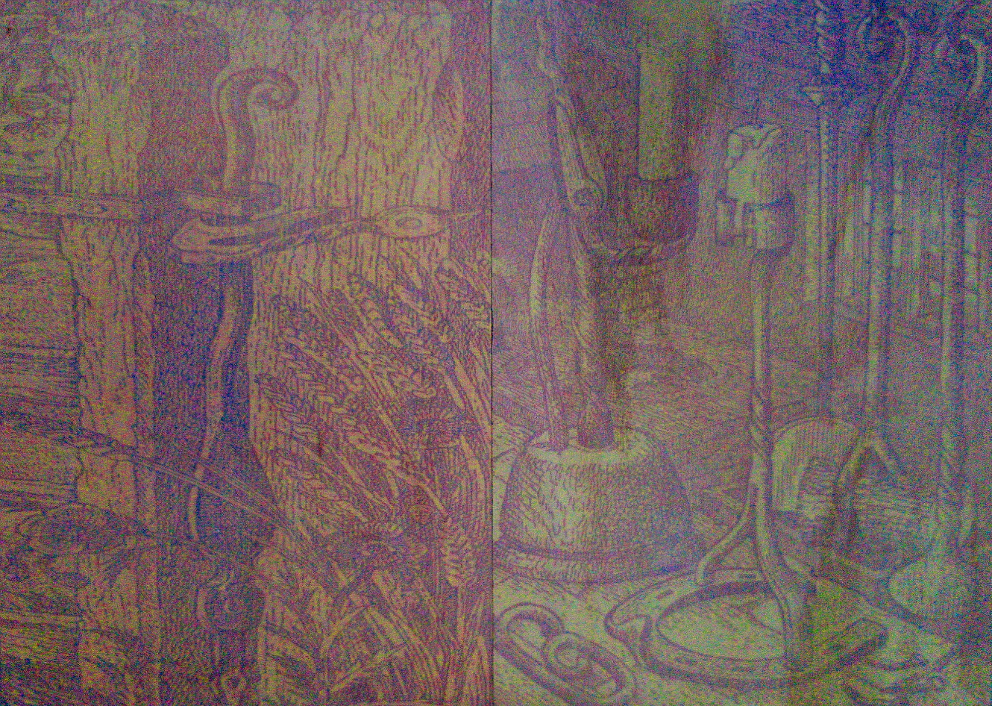 Cyanotype Prints